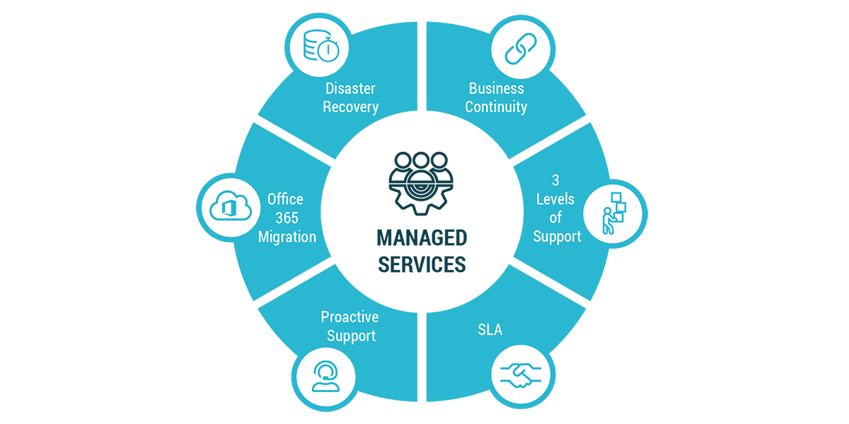 Link Consulting - Infographics - Managed Services